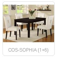 COS-SOPHIA (1+6)